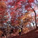 京王電鉄 プラットガール 京王線でゆく。「高尾山 紅葉」篇 2014年 × 横田美紀 TVCM