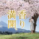 伊藤園 お~いお茶「香り満開」篇 × 中谷美紀 TVCM