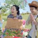 リポビタンファイン「ピクニックパーティー」篇 × 井上真央 TVCM