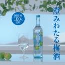 サントリー 澄みわたる梅酒「めっちゃウメェ~」編 × 生田斗真 TVCM