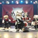 Y!mobile(ワイモバイル)「なめ猫バンド ザ・ベストテン」篇 × 桐谷美玲 TVCM